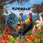 ESCOBAR - BIRD OF PRAY big